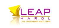 small logo leap harol