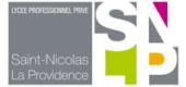 SNLP logo small